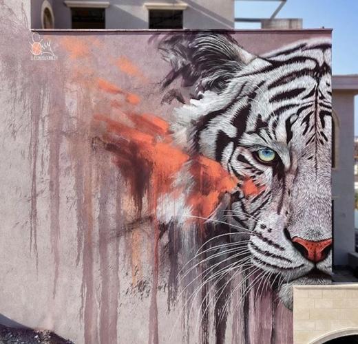 Giornata-internazionale-della-tigre-Sonny-520x500.jpg