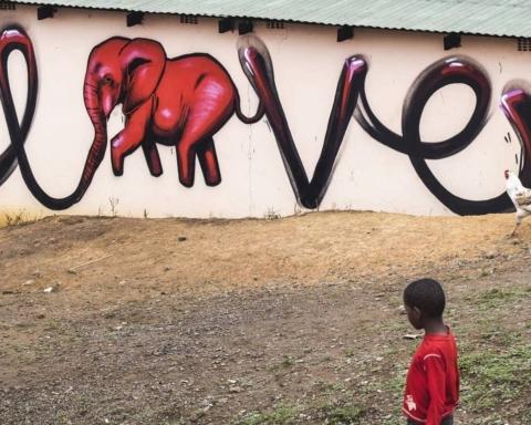 Giornata mondiale dell'elefante