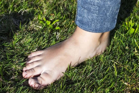 grounding piedi nudi natura