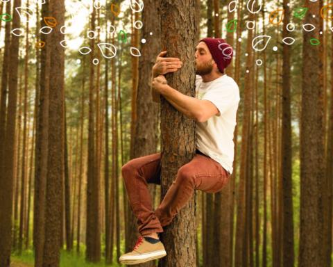 Adotta un albero | Regali Last Minute