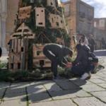 l'albero di Natale dei gatti realizzata dall'associazione a Cuperte de Natale