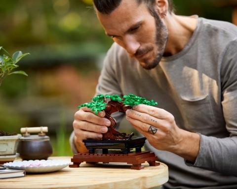 i mattoncini lego della collezione botanical