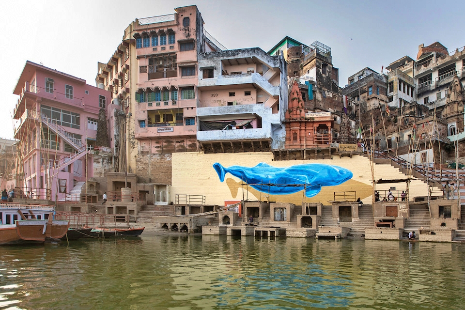 giornata-mondiale-della-balena-2021-Nevercrew-Varanasi.jpg