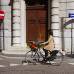 MobilitARS   MobilitARS città resiliente