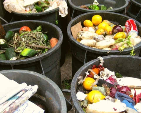 Food Waste Index Report 2021