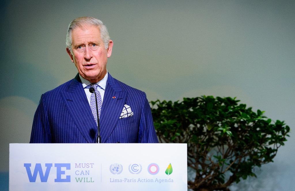 Principe Carlo sostenibilità