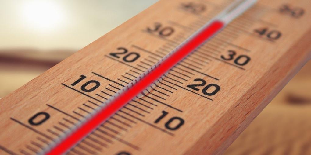 Scienziati del clima | Temperature