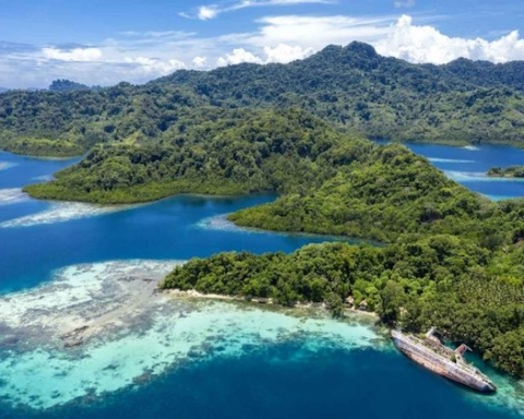 Wagina Isole Salomone