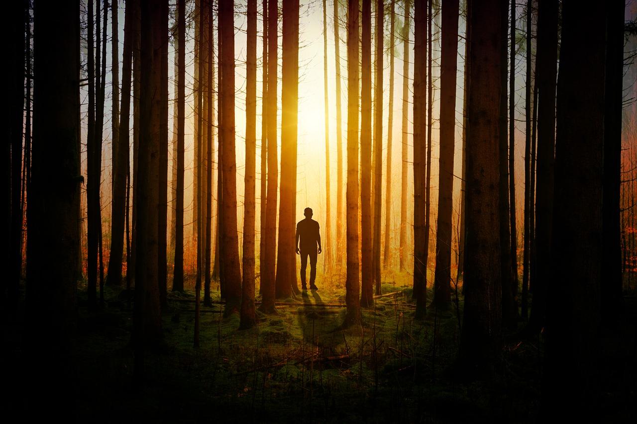 uomo nei boschi ecopsicologia