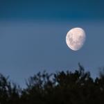 cinque fasi lunari