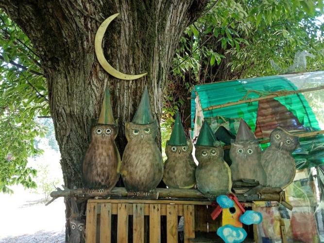piemonte-con-bambini-bosco-fatato-cappuccetto-gufi-e-luna-667x500.jpg
