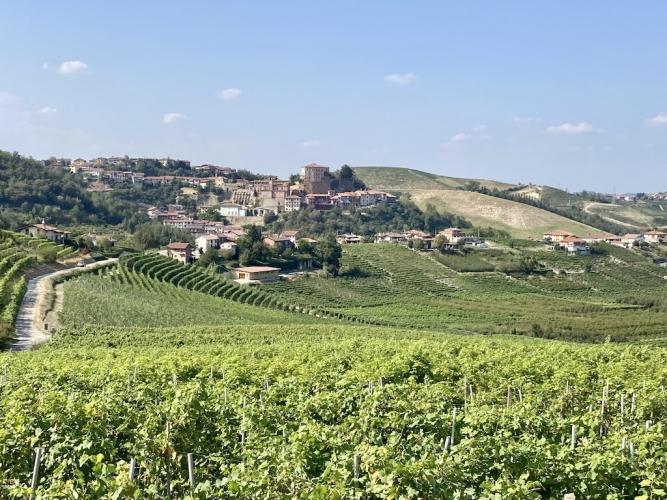 castellinaldo-panorama-667x500.jpg