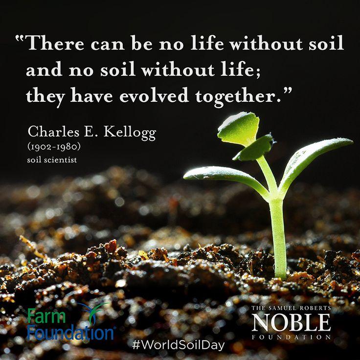 giornata mondiale del suolo