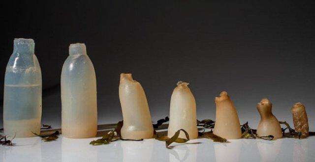 bottiglia commestibile
