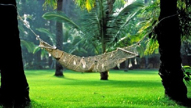 Eco vacanze