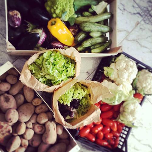Foodsharing 2