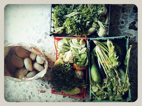 Foodsharing 6