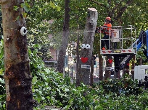 2015, gli alberi di via Gluck vengono tagliati nonostante le manifestazioni di protesta