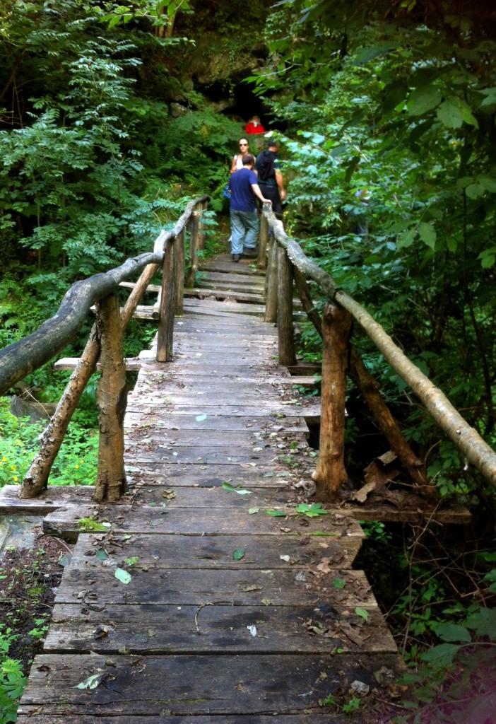 Un ponticello di legno nel sentiero dei Sarvanot