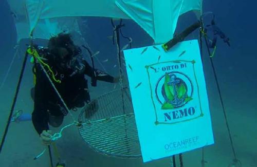 LOrto-di-Nemo-2
