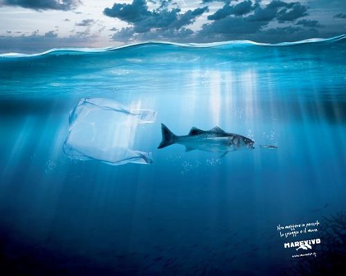 I pericoli della plastica sull'ecosistema marino - Marevivo
