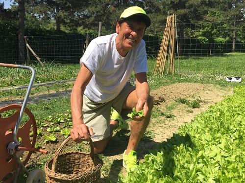 Morandi cura il suo orto