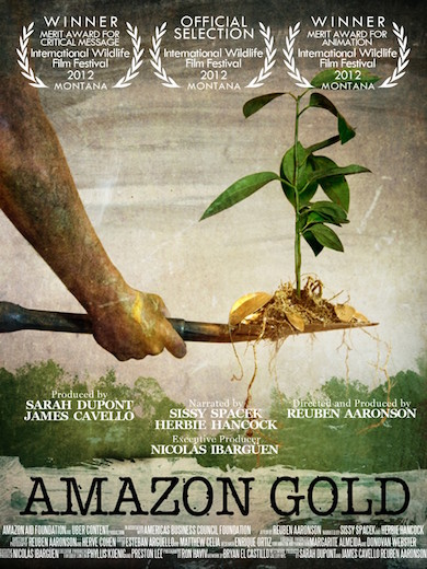 amazon gold poster
