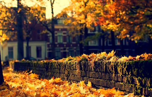 autunno-