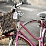bike-tagging 2