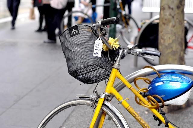 bike-tagging 5