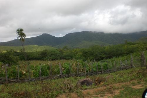 brasile-cearà