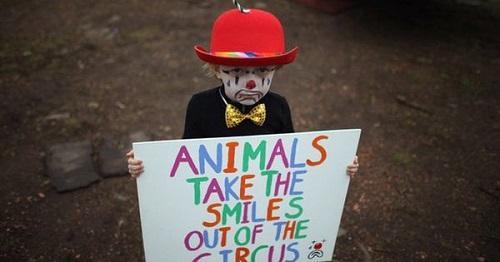 child no circus