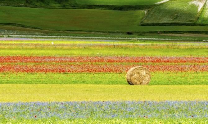 Italia a piedi: itinerari
