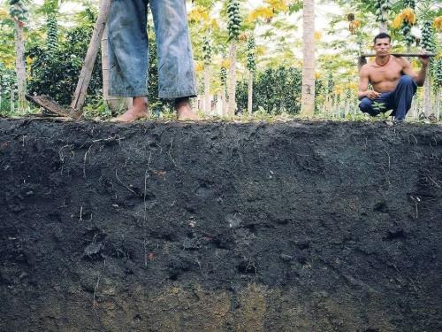 Amazonian Dark Earth. Foto: ultrakulture.com