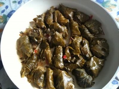 Involtini vegetariani di foglie di vite