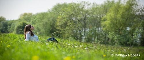 30 Days Wild - prato fiorito