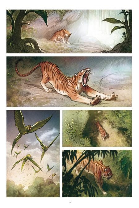 Illustrazioni 2