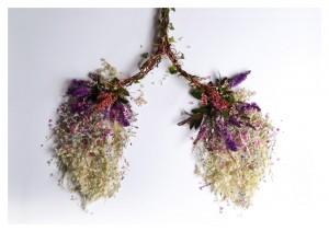 I polmoni, uno degli organi del corpo umano riprodotti da Camila Carlow