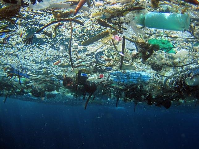 marine_debris