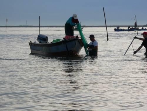 Pescatori al lavoro sul Mar Adriatico