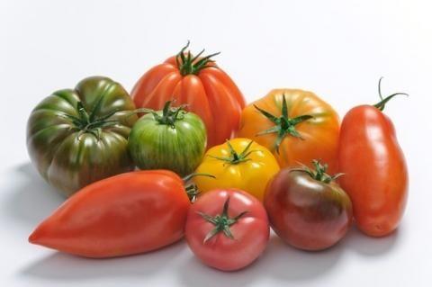 pomodori vari