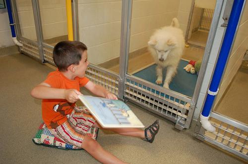 shelter_buddies_reading_program_3