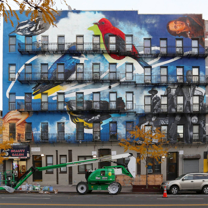 street-art-uccelli-rari-audubon-mural-project-8-700x700