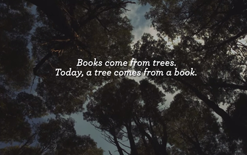 trees and books