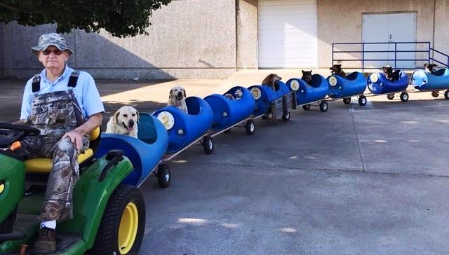 treno per salvare cani