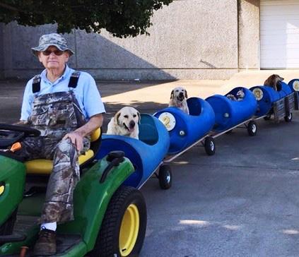 treno per cani