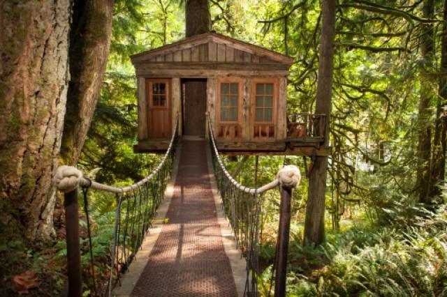 Montagna meta ideale per le vacanze di natale for Case in legno sugli alberi