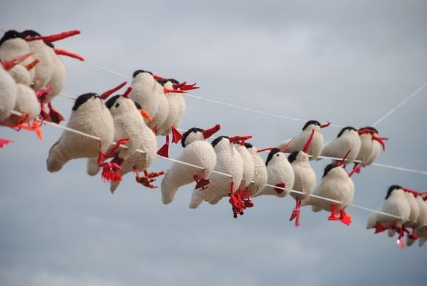 yarn-birds