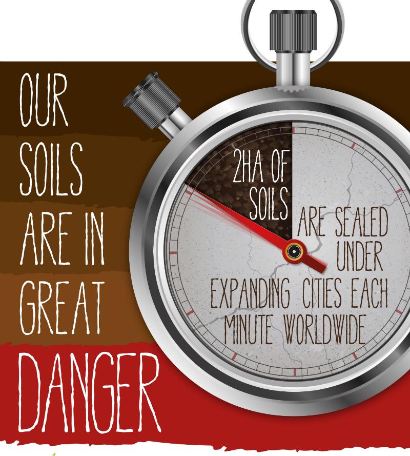 year-of-soil2_800